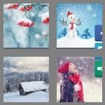 cheats-4-pics-1-word-8-letters-snowfall-8363570