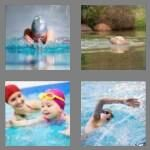 cheats-4-pics-1-word-8-letters-swimming-8577755