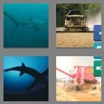 cheats-4-pics-1-word-8-letters-thresher-2240917