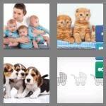cheats-4-pics-1-word-8-letters-triplets-7976712