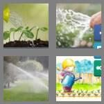 cheats-4-pics-1-word-8-letters-watering-5856542