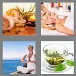 cheats-4-pics-1-word-8-letters-wellness-2747219
