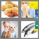 cheats-4-pics-1-word-9-letters-allergies-8068007