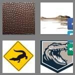 cheats-4-pics-1-word-9-letters-alligator-4015236