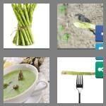 cheats-4-pics-1-word-9-letters-asparagus-1374292