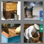 cheats-4-pics-1-word-9-letters-beekeeper-2104621