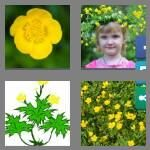 cheats-4-pics-1-word-9-letters-buttercup-2180586