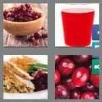 cheats-4-pics-1-word-9-letters-cranberry-4207657