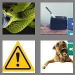 cheats-4-pics-1-word-9-letters-dangerous-1855735