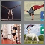 cheats-4-pics-1-word-9-letters-handstand-9615657