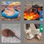 cheats-4-pics-1-word-9-letters-horseshoe-4063292
