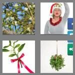 cheats-4-pics-1-word-9-letters-mistletoe-2214063