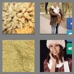 cheats-4-pics-1-word-9-letters-sheepskin-7721901