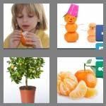 cheats-4-pics-1-word-9-letters-tangerine-9643725
