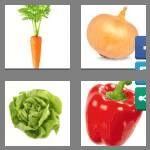 cheats-4-pics-1-word-9-letters-vegetable-5879880