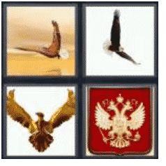 answer-eagle-2