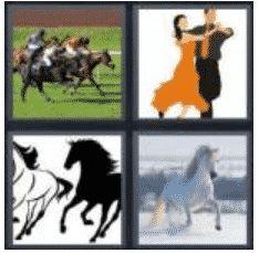 answer-gallop-2