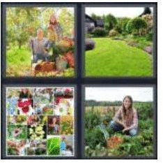 answer-garden-2