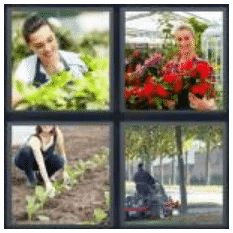 answer-gardener-2