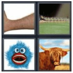 answer-hairy-2