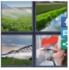 answer-irrigate-2