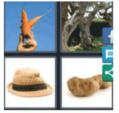 answer-misshapen-2