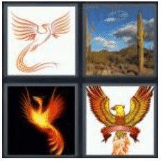 answer-phoenix-2