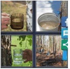 answer-sap-2