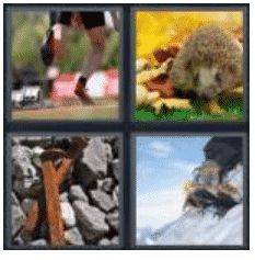 answer-spikes-2