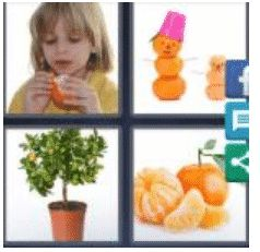answer-tangerine-2