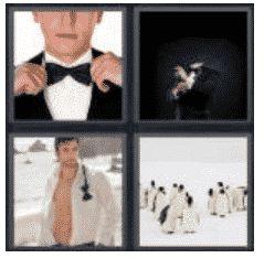 answer-tuxedo-2