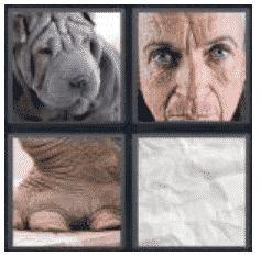 answer-wrinkled-2